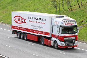 Jacks-17